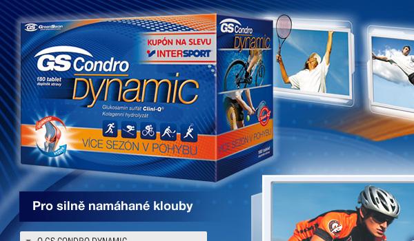 condrodynamic11